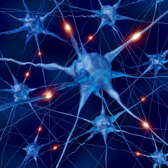 Neuron, idegsejt
