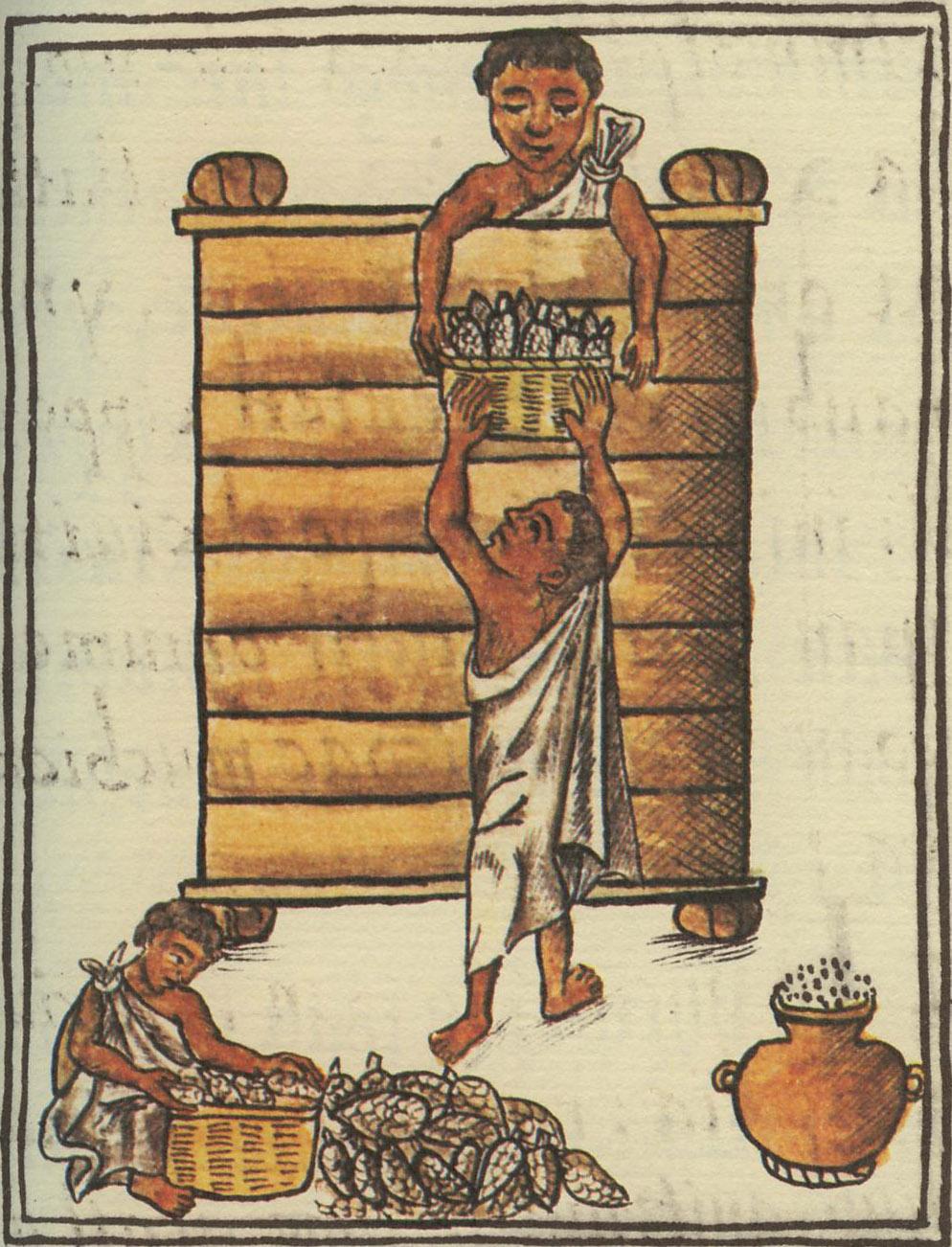 kakaó inka mítosz