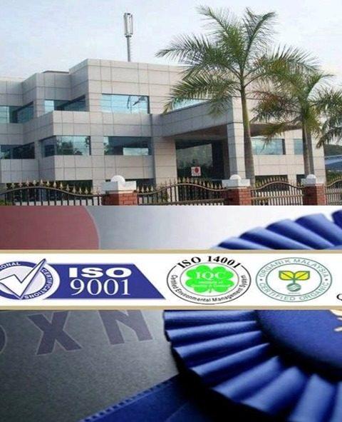 DXN minőség